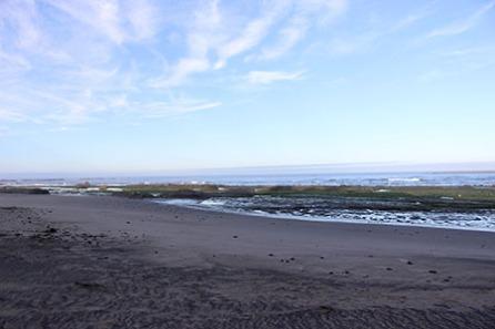 Otter Crest low tide