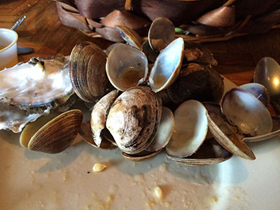 Delicious Clam Carnage