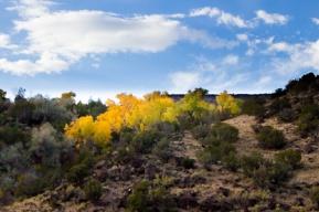 Fall on the Rio Grande